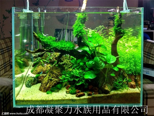 重庆水草鱼缸定做厂家