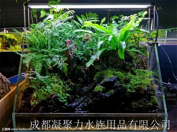 重庆水草缸定做厂