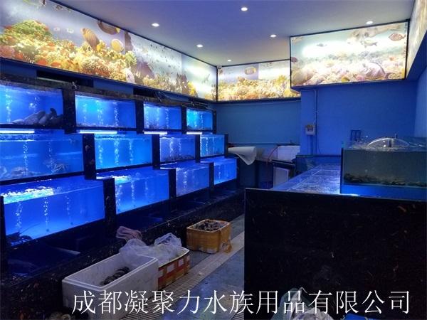 重庆酒店海鲜池订制厂家