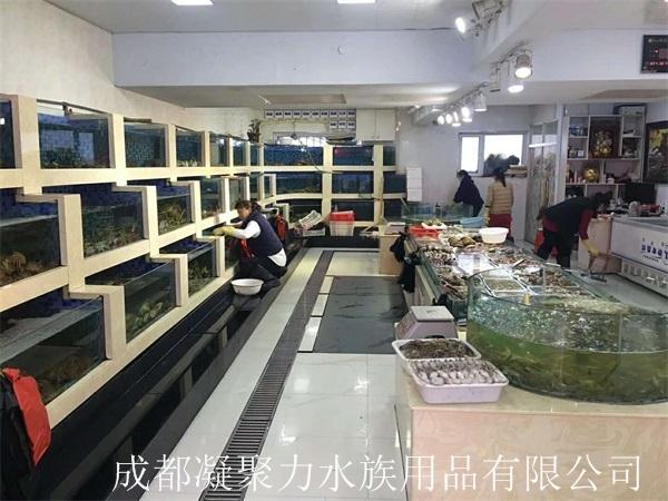 重庆酒店河鲜池定制厂家