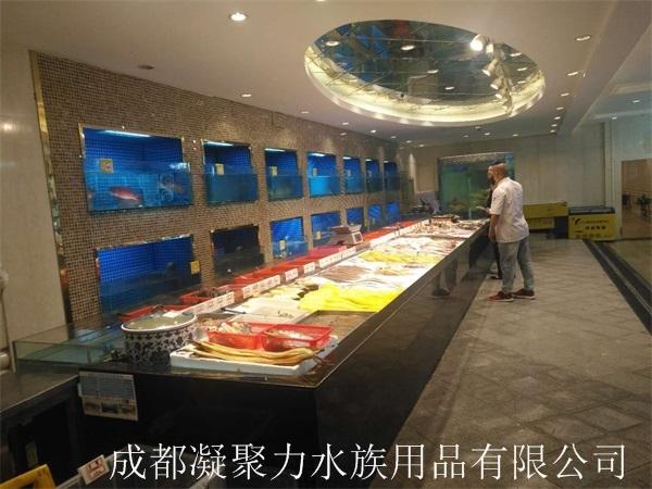 重庆酒店河鲜池定做厂家