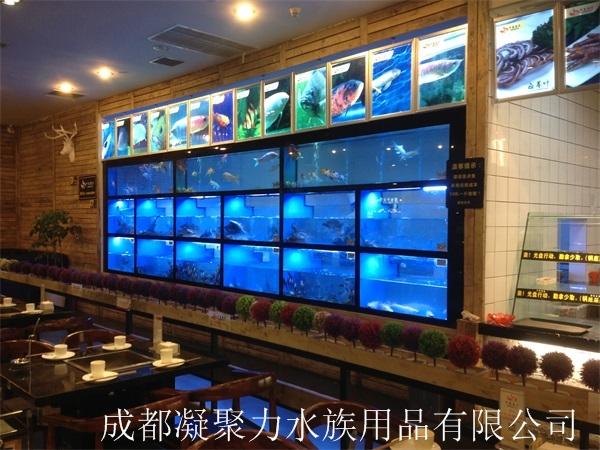 重庆河鲜池订制