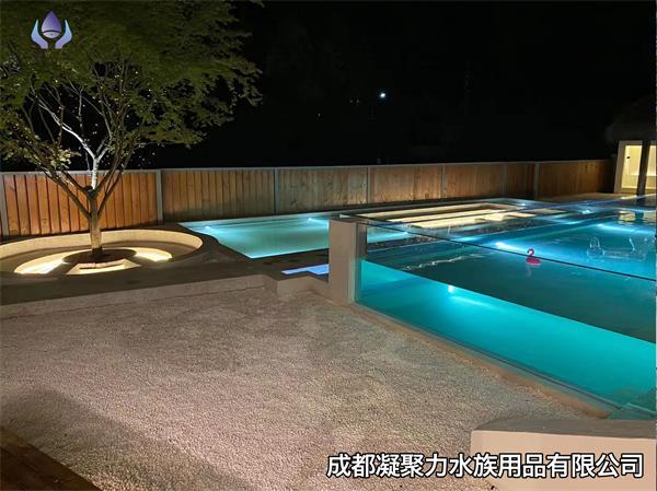 重庆无边际游泳池定做厂家