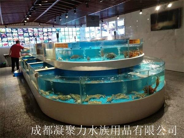 成都餐馆海鲜池