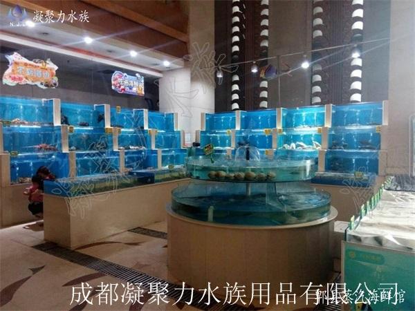 郫县蒸汽海鲜馆鱼缸定做厂家