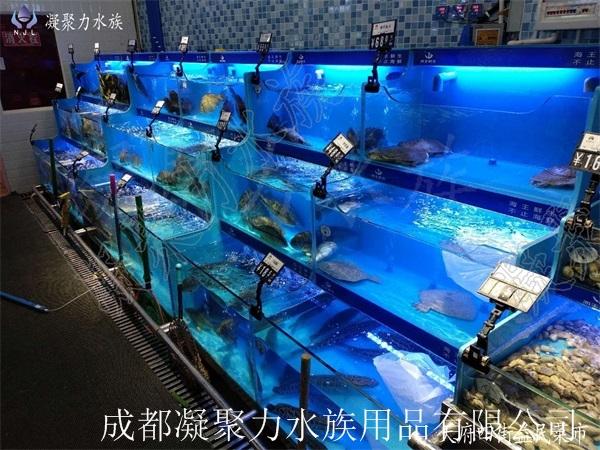 重庆鱼缸定制厂家浅谈:鱼池过滤系统分为10大过滤系统