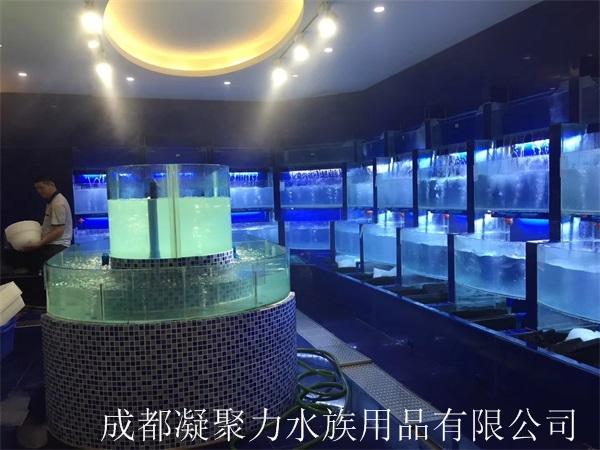 西昌海河鲜池厂家