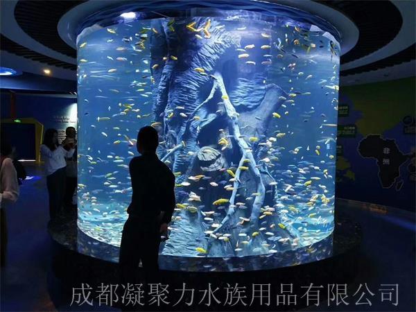 重庆大型观赏鱼缸订做