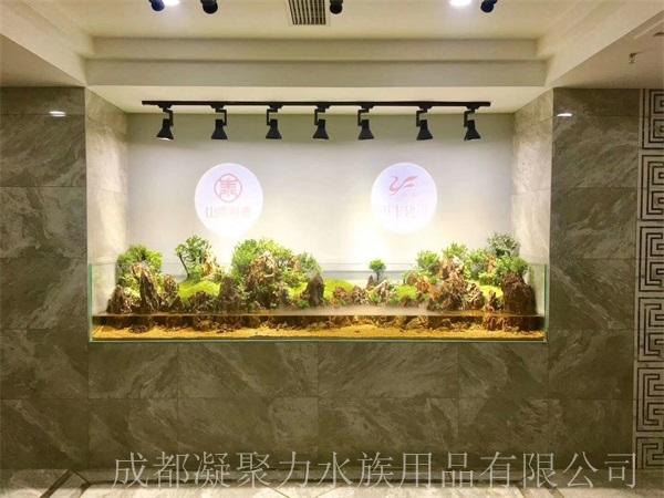 重庆鱼缸厂家分享鱼缸用什么包边