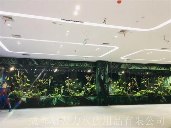 重庆雨林缸订做厂家