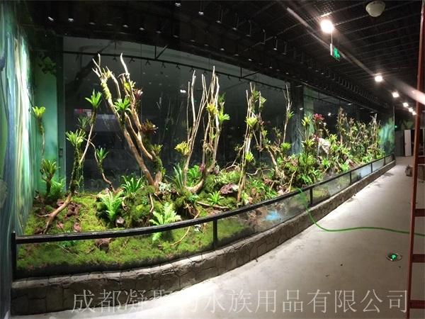 重庆雨林缸制作厂家