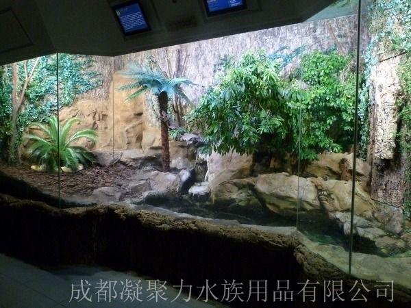 重庆雨林缸制作厂