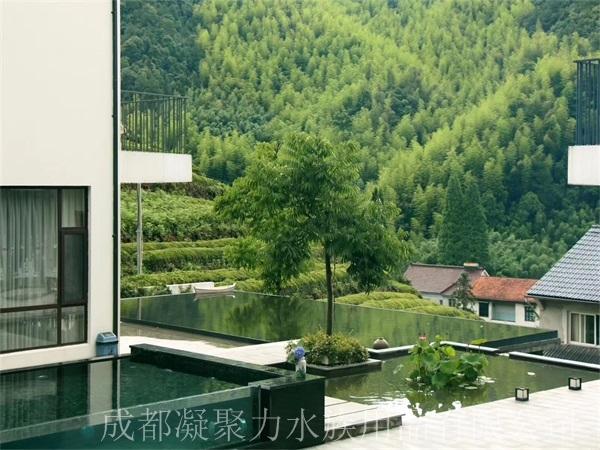 重庆无边游泳池定做厂家