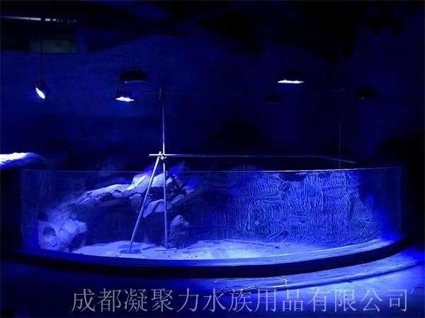 重庆海洋馆设计