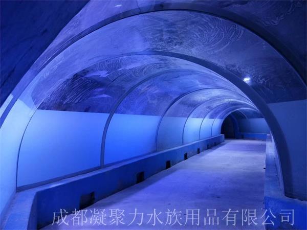 重庆海洋馆设计厂家