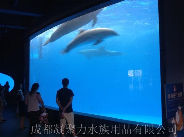 重庆海洋馆施工