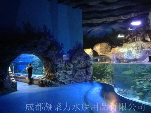重庆海洋馆施工厂家