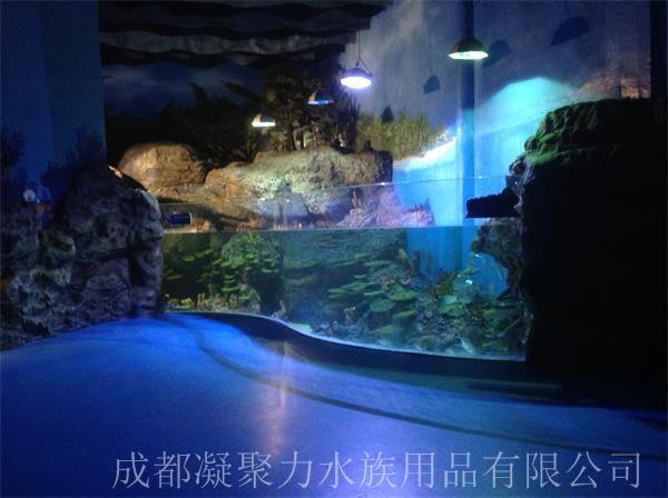 重庆海洋馆鱼缸定做