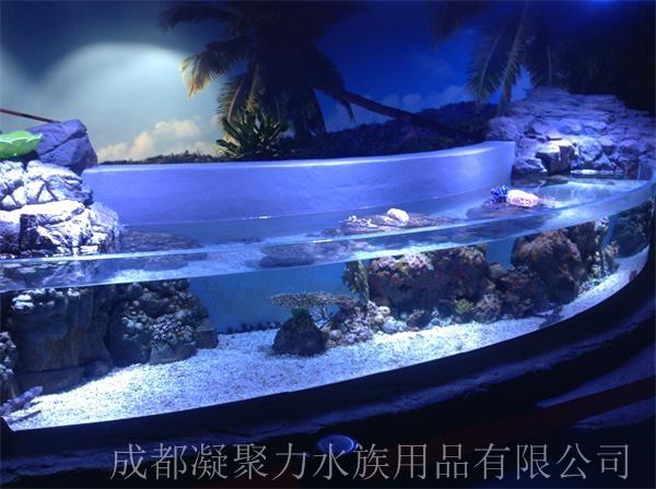重庆海洋馆鱼缸定制