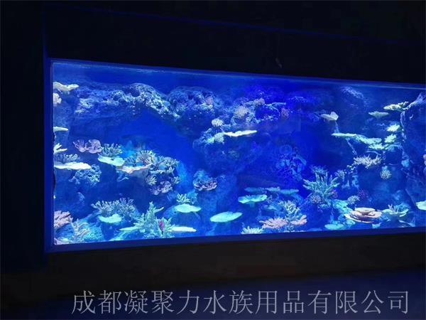 重庆海洋馆鱼缸定制厂家