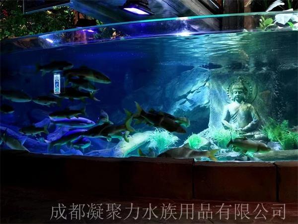 重庆海洋馆亚克力鱼缸定做