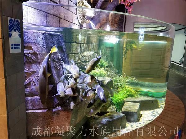 重庆海洋馆鱼缸定制厂