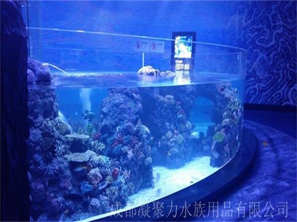 重庆海洋馆亚克力鱼缸厂家