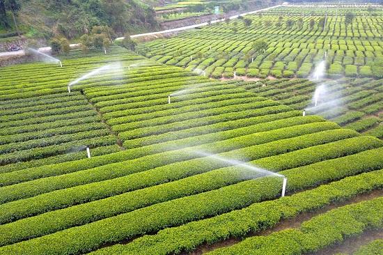 成都园林灌溉设备厂家介绍:现代农业生产中多使用智能灌溉控制系统