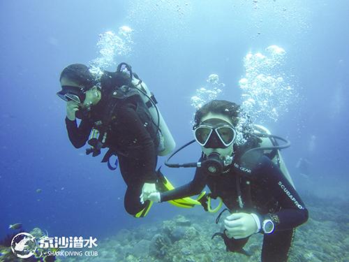 太原自由潜水培训机构浅谈自由泳时一些常见的问题