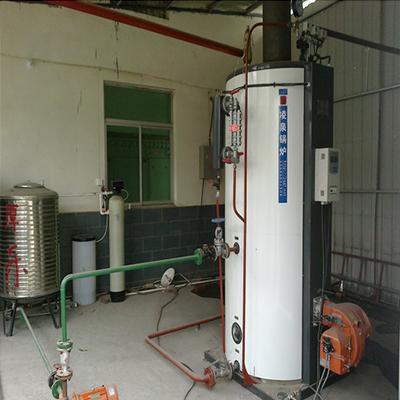 龙岩饲料公司LSG0.5-0.7油气炉