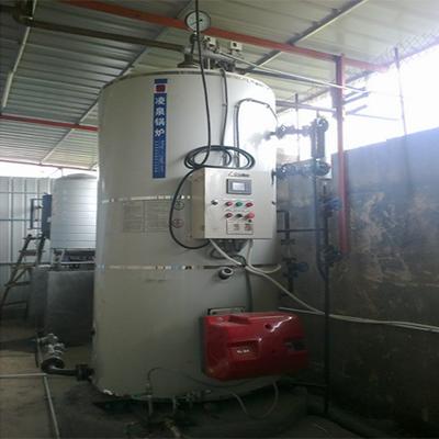 泉州化工公司LSS1-1.0-YQ