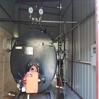 泉州食品厂WNS1-1.0-YQ