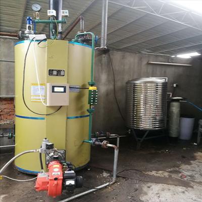 食用菌杀菌用0.5-0.7油气蒸汽发生器