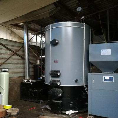 涂料厂0.5-0.7生物质蒸汽发生器