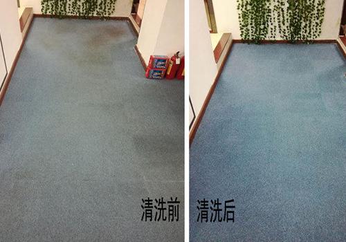 荔湾上门地毯清洗服务