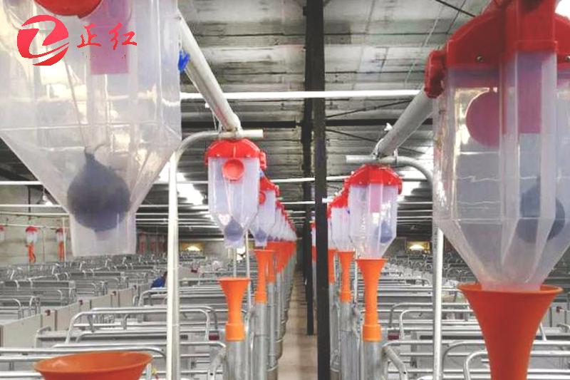 自动化养殖料线