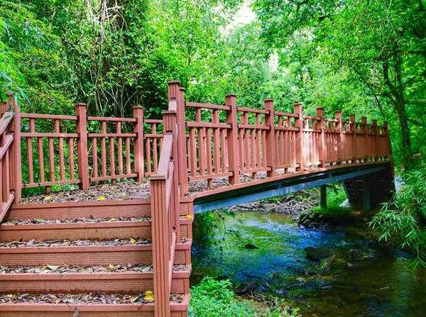 普洱景东徐家坝自然保护区