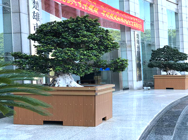 楚雄市国税局