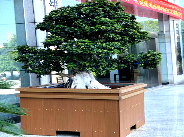 景观绿化塑木花箱