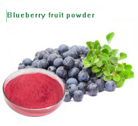 Blueberry frui…