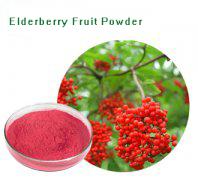 Elderberry Fru…