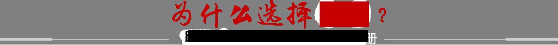 襄陽網站建設
