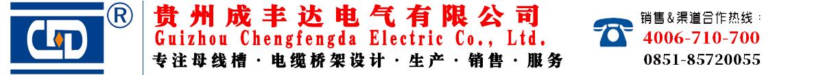 贵州成丰达电气有限公司