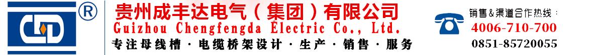 贵州成丰达电气(集团)有限公司