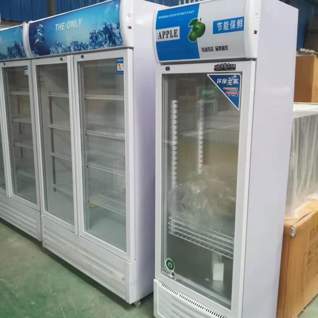 立式双门低温冷冻柜