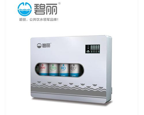 福州RO反渗透纯水机