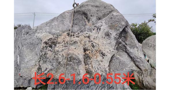 2.6米长泰山石