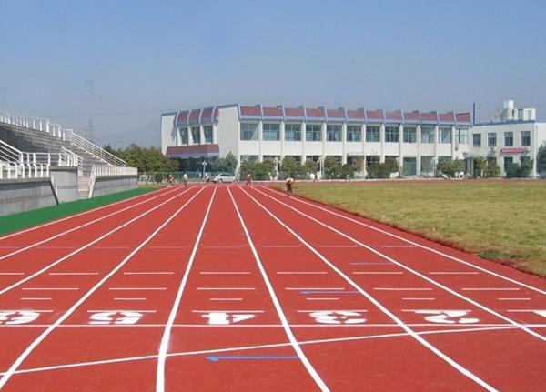 运动场地坪