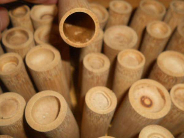 中药竹罐养生采用竹罐的好处