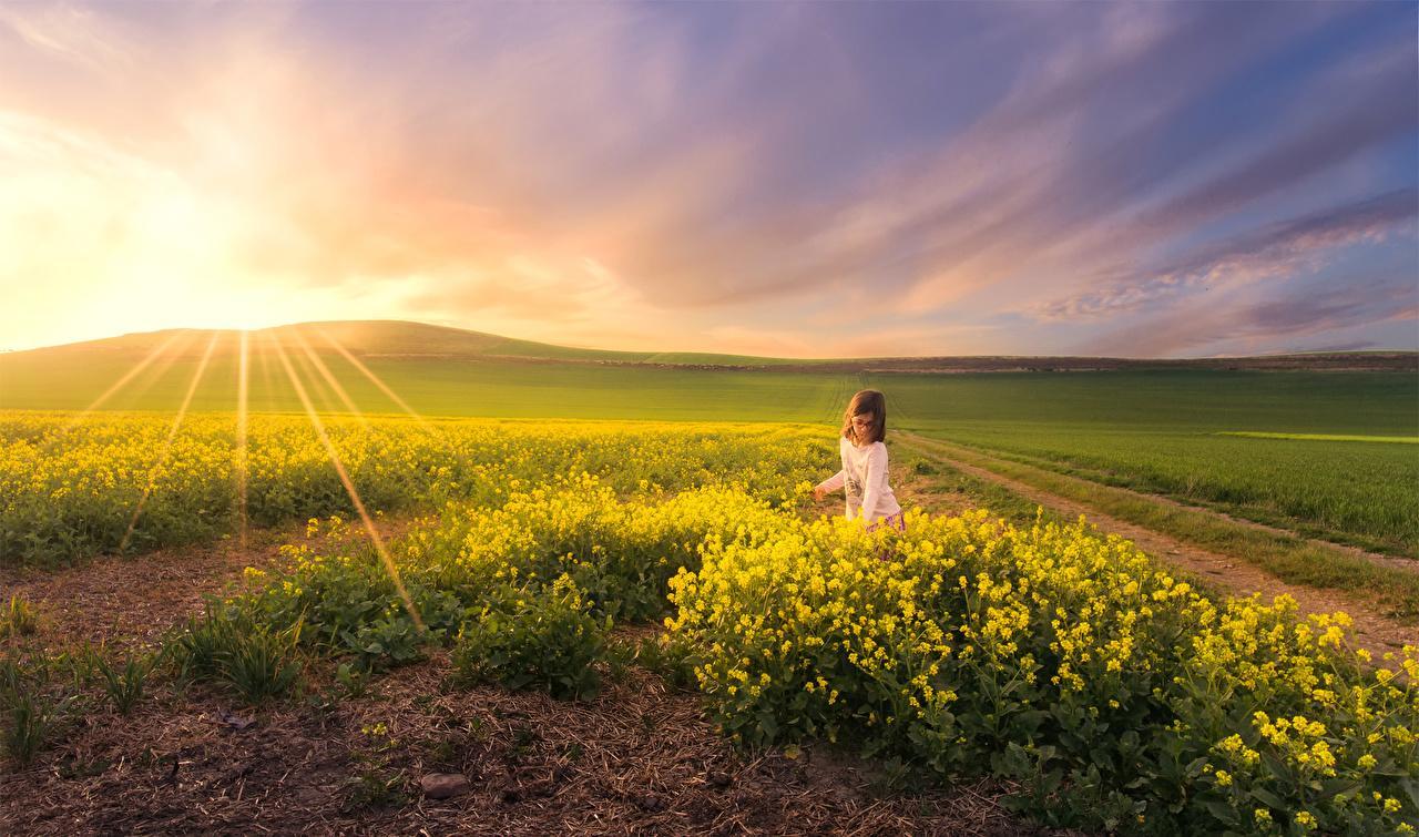 【摄影是用光的艺术】先要懂得自然光才能更好地用它!